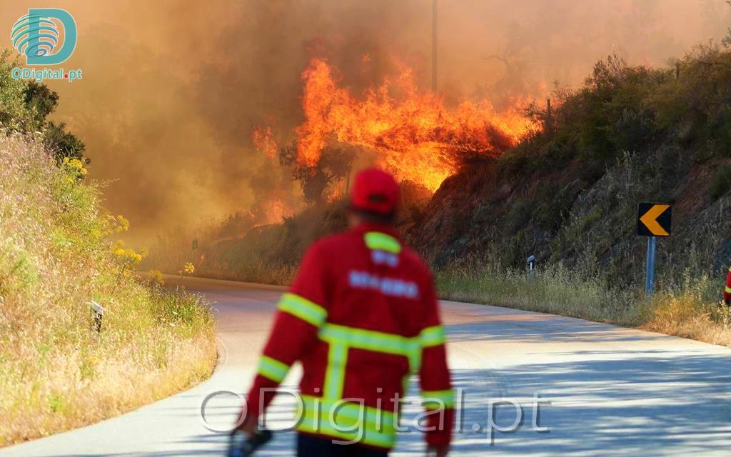 Incêndio junto à estrada