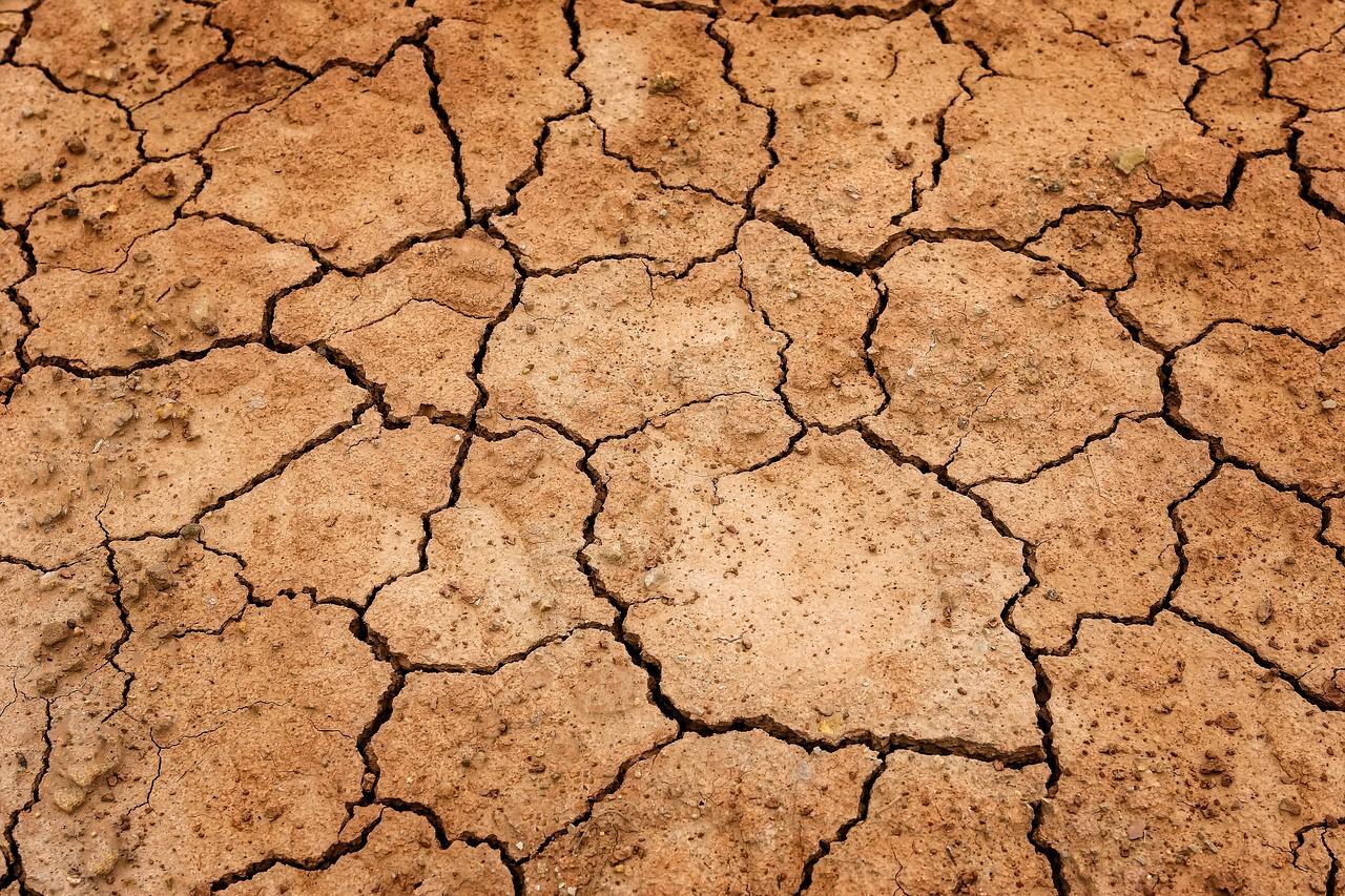 Seca agravou-se em Setembro no Baixo Alentejo