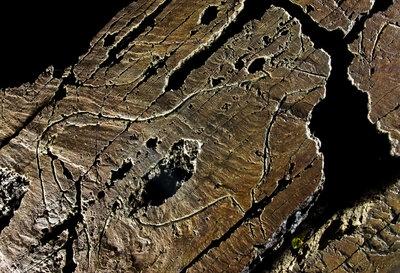 Sítios Pré-Históricos de Arte Rupestre  do Vale do Rio Coa e de   Siega Verde