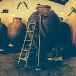 50 produtores de vinho nacionais e internacionais juntam-se no Alentejo para Amphora Wine Day