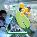 Transferência de tecnologia e fixar recursos humanos altamente qualificados na região é a aposta do CEBAL