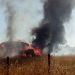 Tractor carregado de palha incendeia-se próximo de Alandroal