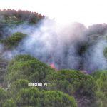 Redondo: Incêndio na Serra D'Ossa em fase de resolução (c/foto e vídeo)