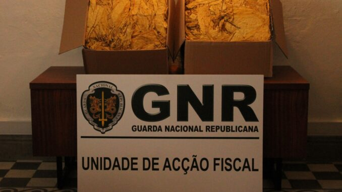 GNR apreende folha de tabaco em Évora