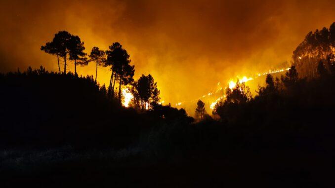 Incêndio em Proença-a-Nova