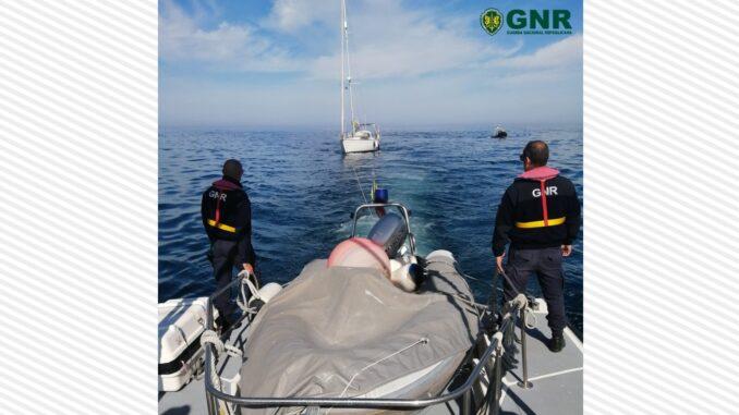 Orcas abalroam veleiro