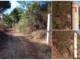 Caminhavam pela Serra D'Ossa e foram, alegadamente, agredidos por proprietários de terreno