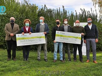 Vencedores do Concurso +Eco. Alentejo Central