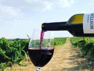 Vinhos de Montemor-o-Novo