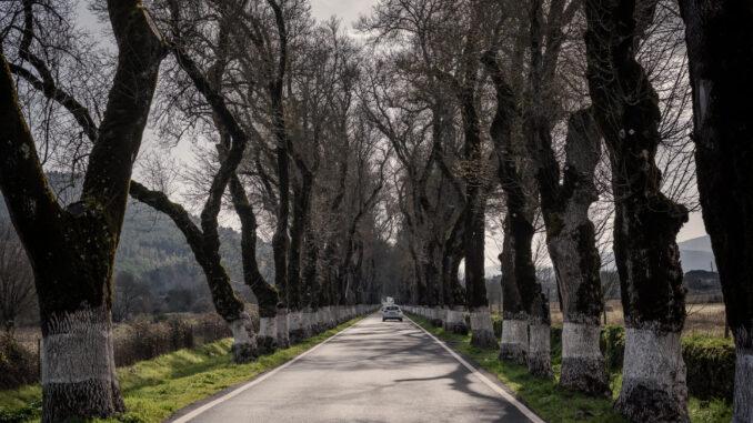 Estrada no concelho de Marvão