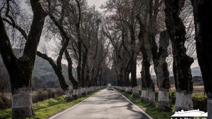 Estrada em Marvão