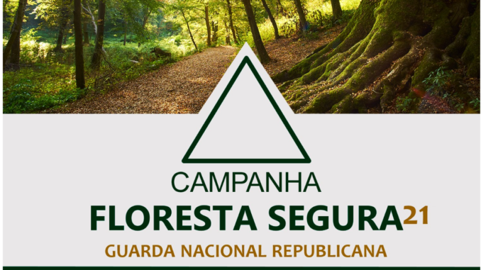 Floresta Segura