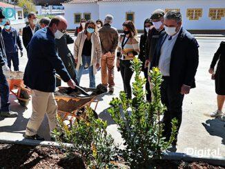Plantação de árvores no Alandroal