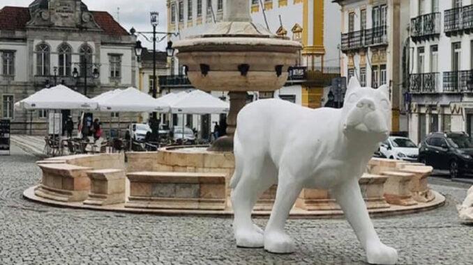 Cão na Praça do Giraldo