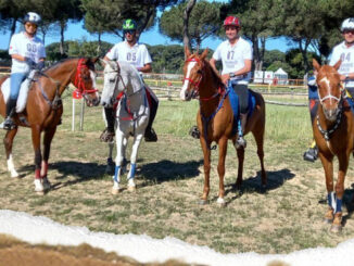 Cavaleiros portugueses