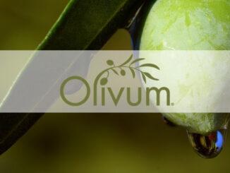 Olivum