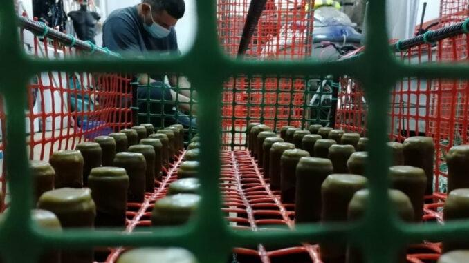 Vinhos Herdade do Cebolal