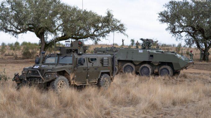 Exercício militar estremoz