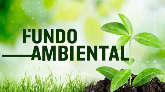 Fundo ambiental